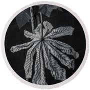 Dry Leaf Collection Bnw 2 Round Beach Towel