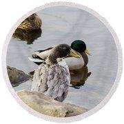 Duck, Duck Round Beach Towel