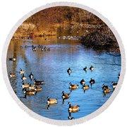 Duck Duck Goose Goose Round Beach Towel