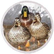Duck - Id 16235-220402-2840 Round Beach Towel