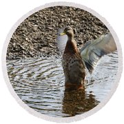 Duck In A Flap Round Beach Towel