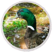 Duck On The Lake 1 Round Beach Towel