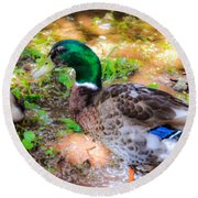 Duck On The Lake 2 Round Beach Towel