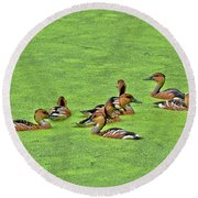 Duck Weed Club Round Beach Towel