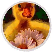 Fuzzy Duckling And Daisies Round Beach Towel