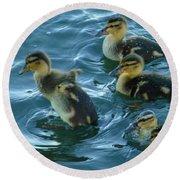 Ducklings Round Beach Towel
