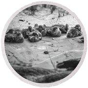 Ducklings Siblings - Grayscale Round Beach Towel