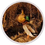 Ducks At Dusk Round Beach Towel