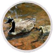Duck Family Round Beach Towel