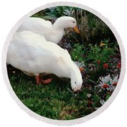 Ducks In The Garden At The Shipwright's Cafe Round Beach Towel