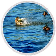 Ducks In Water Round Beach Towel