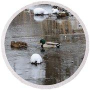 Ducks In Winter Round Beach Towel