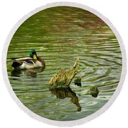 Ducks Life Round Beach Towel