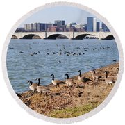 Ducks Of The Potomac Round Beach Towel