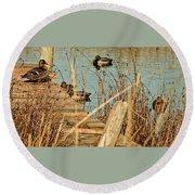 Ducks On A Pond Round Beach Towel