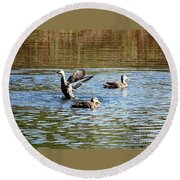 Ducks On Colorful Pond Round Beach Towel