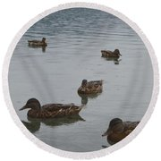 Ducks On Lake Bled Round Beach Towel