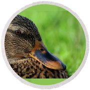 Ducky Up Close And Personal Round Beach Towel
