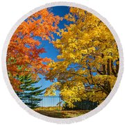 Dueling Maples Round Beach Towel