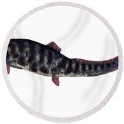 Dunkleosteus Devonian Fish Round Beach Towel