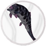Dunkleosteus Fish On White Round Beach Towel