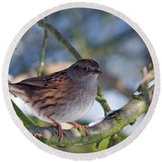 Dunnock On A Snowy Day In Winter Round Beach Towel
