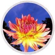 Dusk And A Dahlia Round Beach Towel