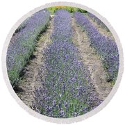 Dutch Lavender Field Round Beach Towel