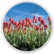 Dutch Tulips Second Shoot Of 2015 Part 10 Round Beach Towel