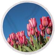 Dutch Tulips Second Shoot Of 2015 Part 8 Round Beach Towel