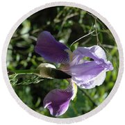 Dwarf Lake Iris Round Beach Towel