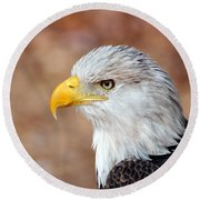 Eagle 10 Round Beach Towel