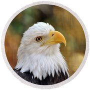 Eagle 9 Round Beach Towel