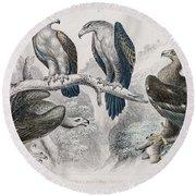 Eagle Birds Print Round Beach Towel