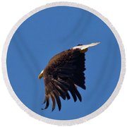 Eagle Dive Round Beach Towel