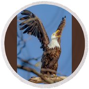 Eagle Excitement Round Beach Towel