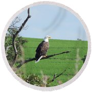 Bald Eagle Overlook Round Beach Towel