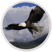 Eagle Flying In Sunlight Round Beach Towel