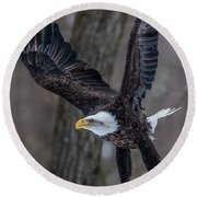 Eagle In The Forest Round Beach Towel