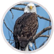 Eagle Mean Muggin Me Round Beach Towel