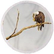 Eagle Nail Biting  Round Beach Towel