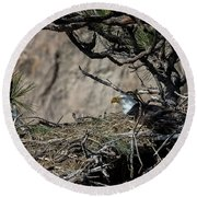 Eagle On The Nest, No. 3 Round Beach Towel