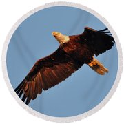 Eagle Over The Fox Round Beach Towel