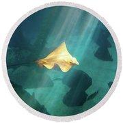 Eagle Ray Underwater Round Beach Towel