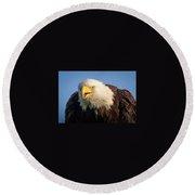 Eagle Stare 2 Round Beach Towel