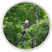 Eagle Watch Round Beach Towel