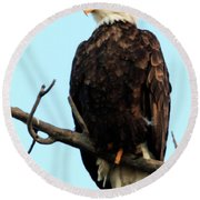 Eagle Watching Round Beach Towel