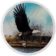 Eagle With Decoy Round Beach Towel