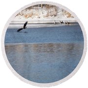 Eagles On The Fox - 1 Round Beach Towel