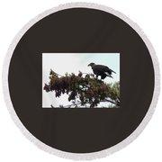 Eaglet In Pines Round Beach Towel